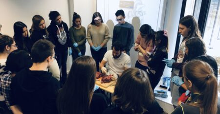 Immersion Day 19 Novembre 2019 Physiologie du coeur 7